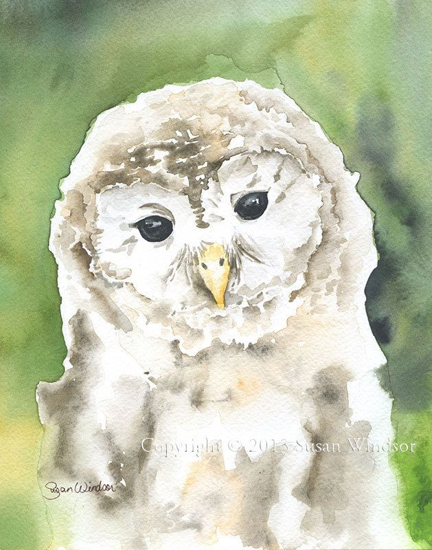 Barred Owl Watercolor Painting Giclee Print 11x14 by SusanWindsor on Etsy
