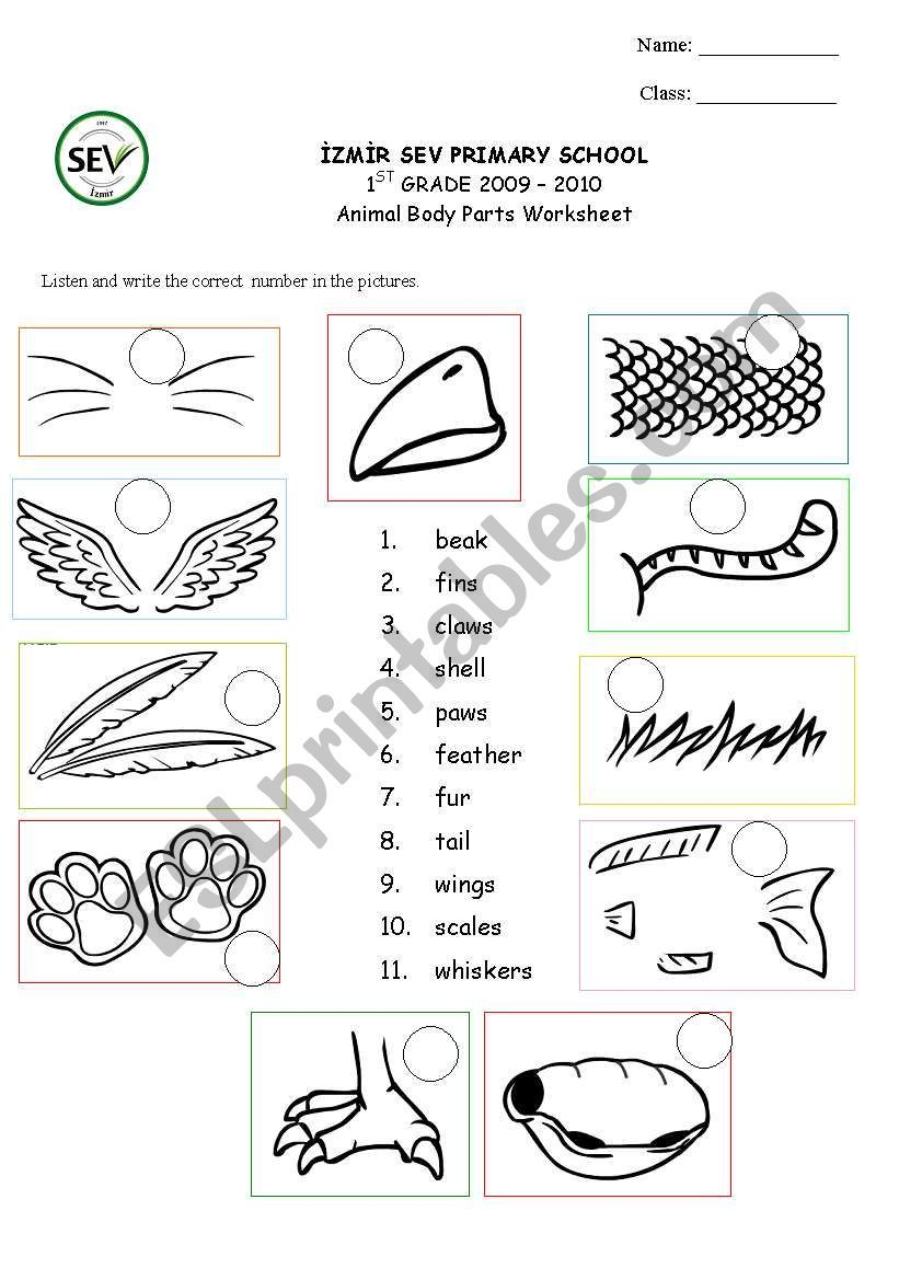 It´s a matching worksheet to revise animal parts for