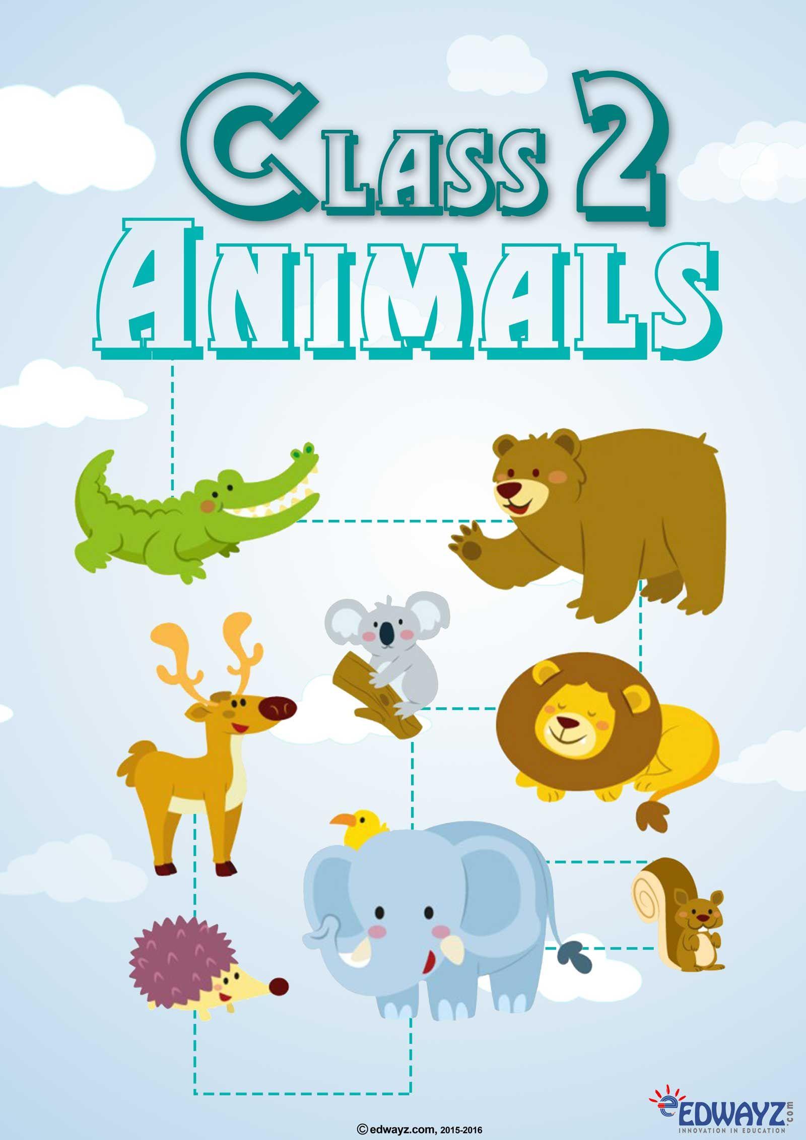 Edwayz Animals