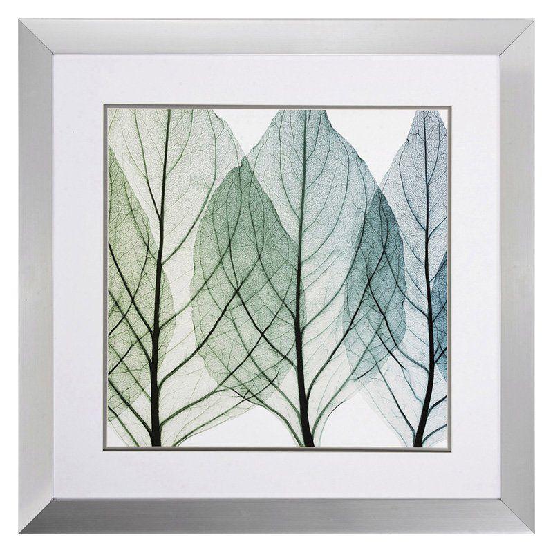 Propac Images Celosias Leaves Ii Framed Wall Art 30w X 30h In 4602 Leaf Wall Art Leaf Artwork Framed Art Prints