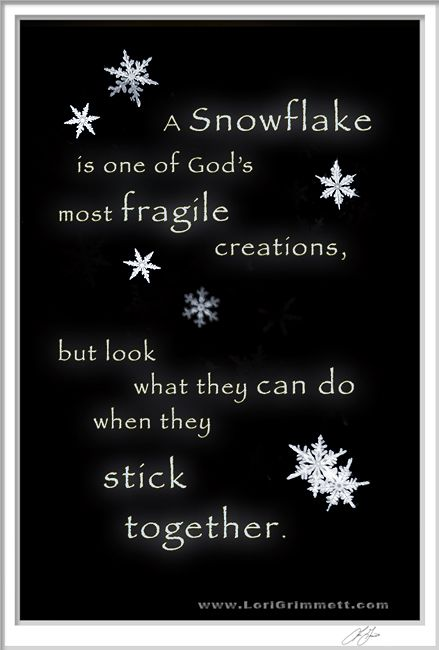 We're All In A Fragile State But When We Band Together There Is Enchanting Snowflake Love Quotes