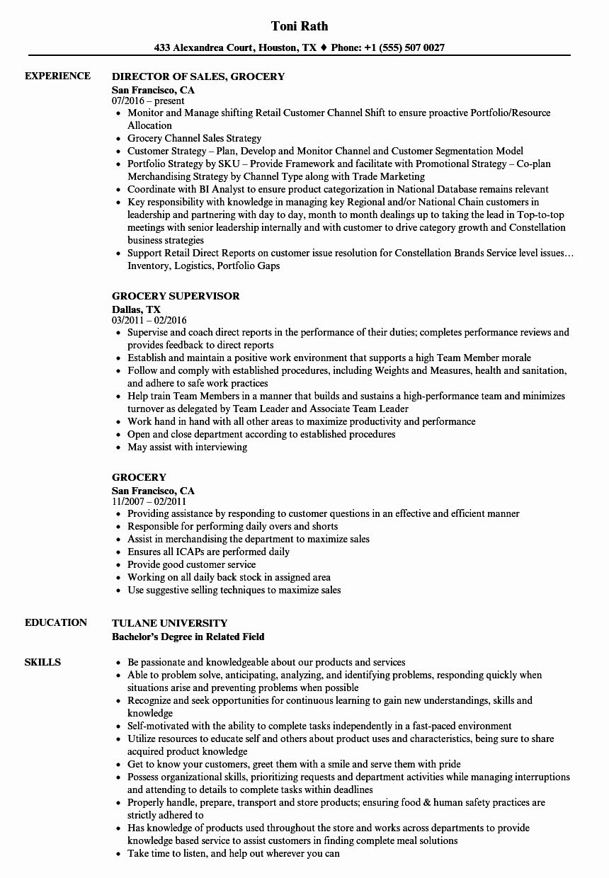 25 Grocery Store Clerk Resume in 2020 Computer support
