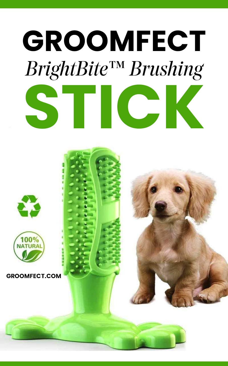 Groomfect Brightbite Is A Low Maintenance Way Of Providing Dental