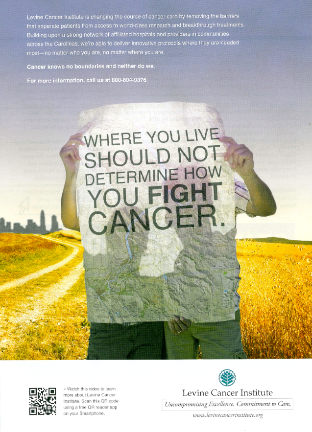 For Curiosity Seekers: More Hospital Print Ads | The
