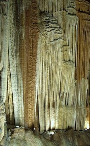 Mark Twain Cave | Travel | Vacation Ideas | Road Trip | Places to Visit | Hannibal | MO | Summer Camp | Historic Site | Tourist Attraction | Hiking Area | Natural Feature | Tour