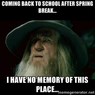 18 Spring Break Memes For Those Who Get Time Off And Those Who Wish They Did Teacher Memes Skyrim Skyrim Memes