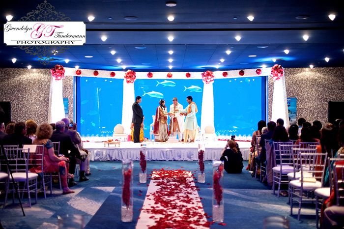 Indian Wedding In An Aquarium