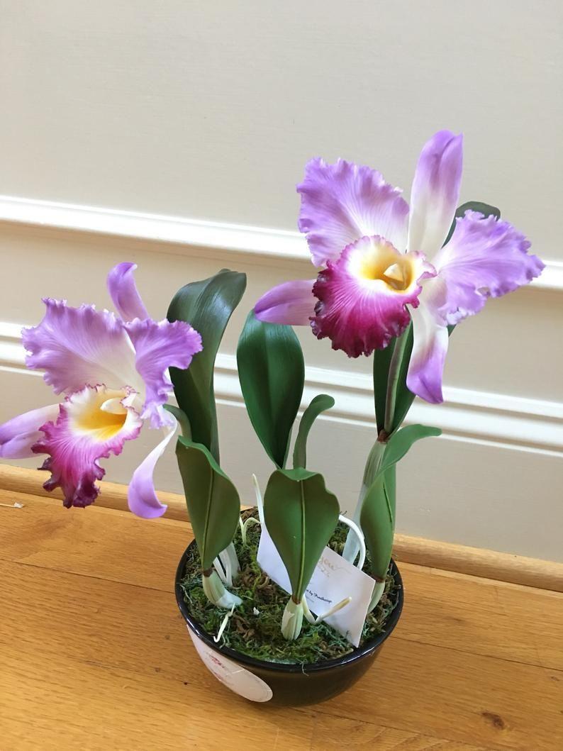 polymer clay flower polymer clay orchid flower clay Flower,cold porcelain clay flower,clay flower with stem,flower arrangement