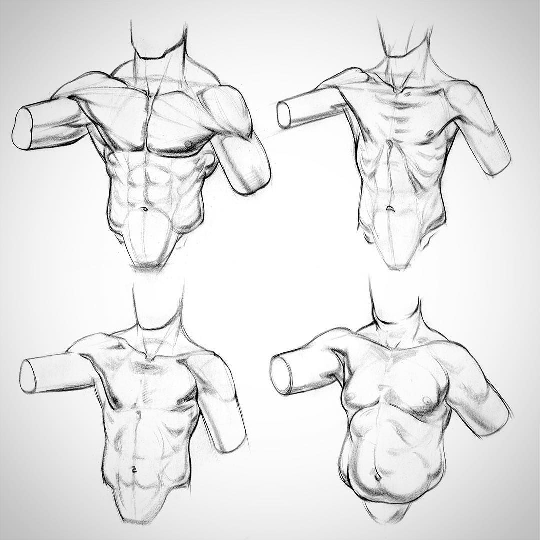 Some body physique variations from the latest video \