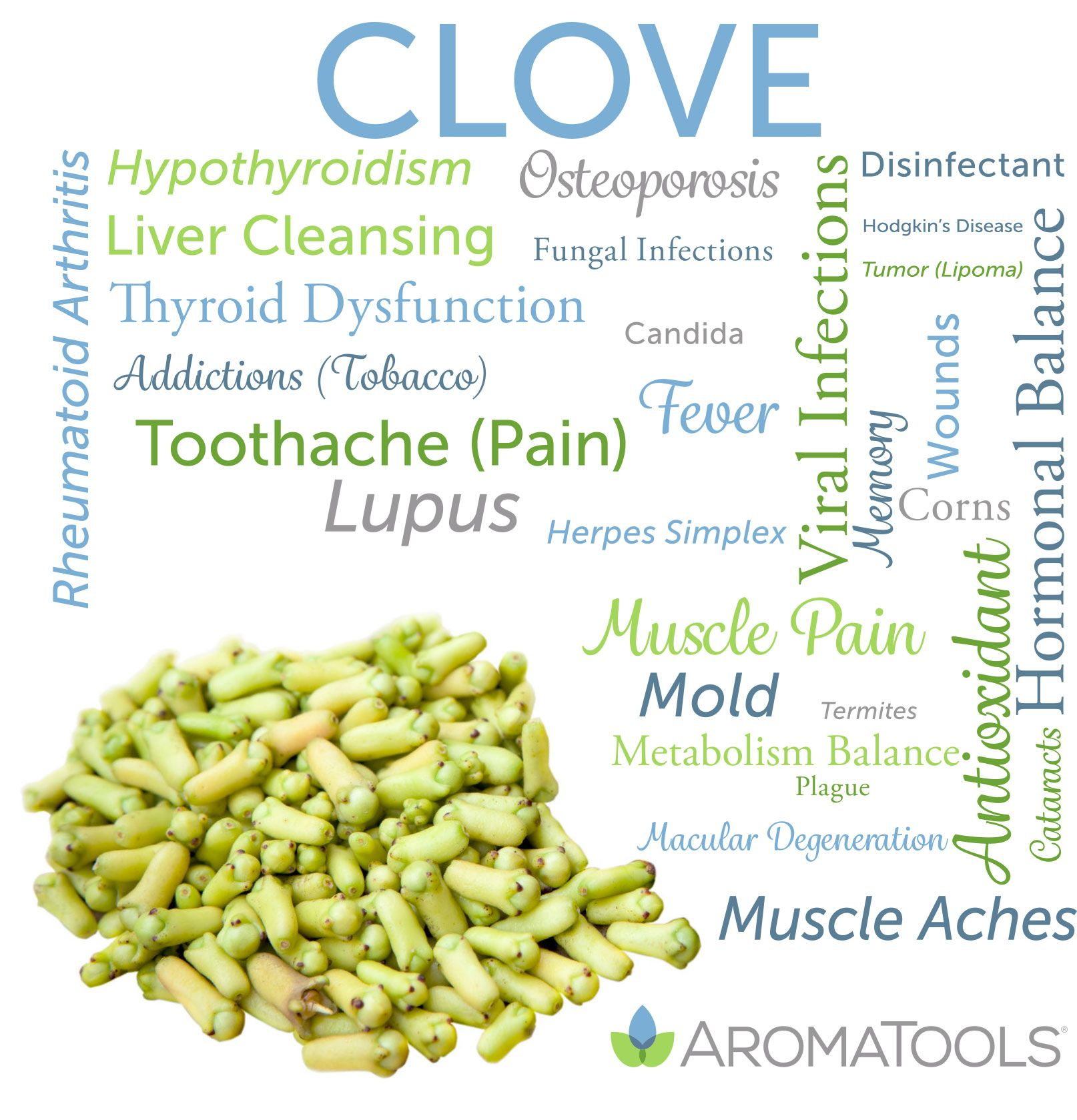 Essential Oil Spotlight Clove Essential Oil For Tendonitis Essential Oils For Colds Essential Oil Benefits