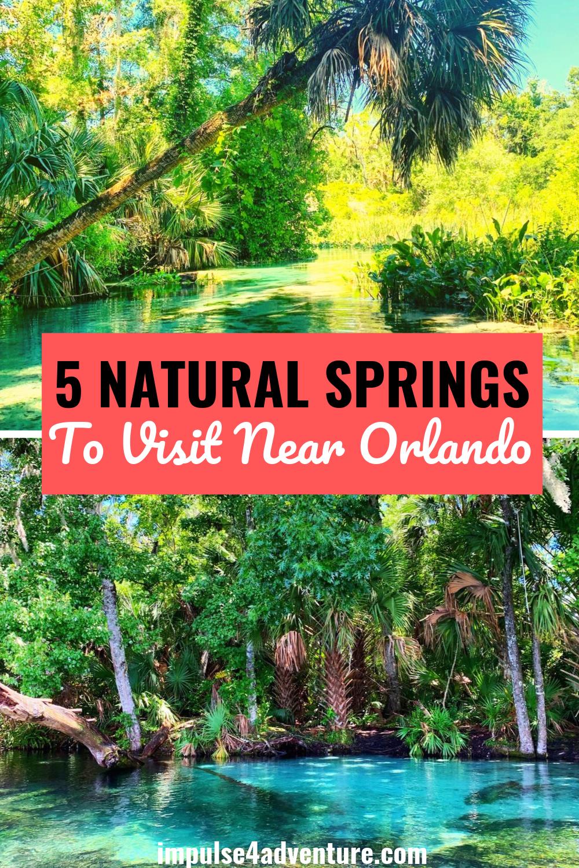 The 5 Best Natural Springs Near Orlando Impulse4adventure Florida Adventures Florida Vacation Spots Florida Adventures Springs Near Orlando