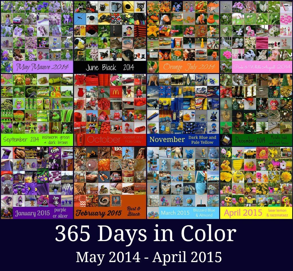 365 Days in Color   This completes my second year of 365 Day…   Flickr - Photo Sharing!