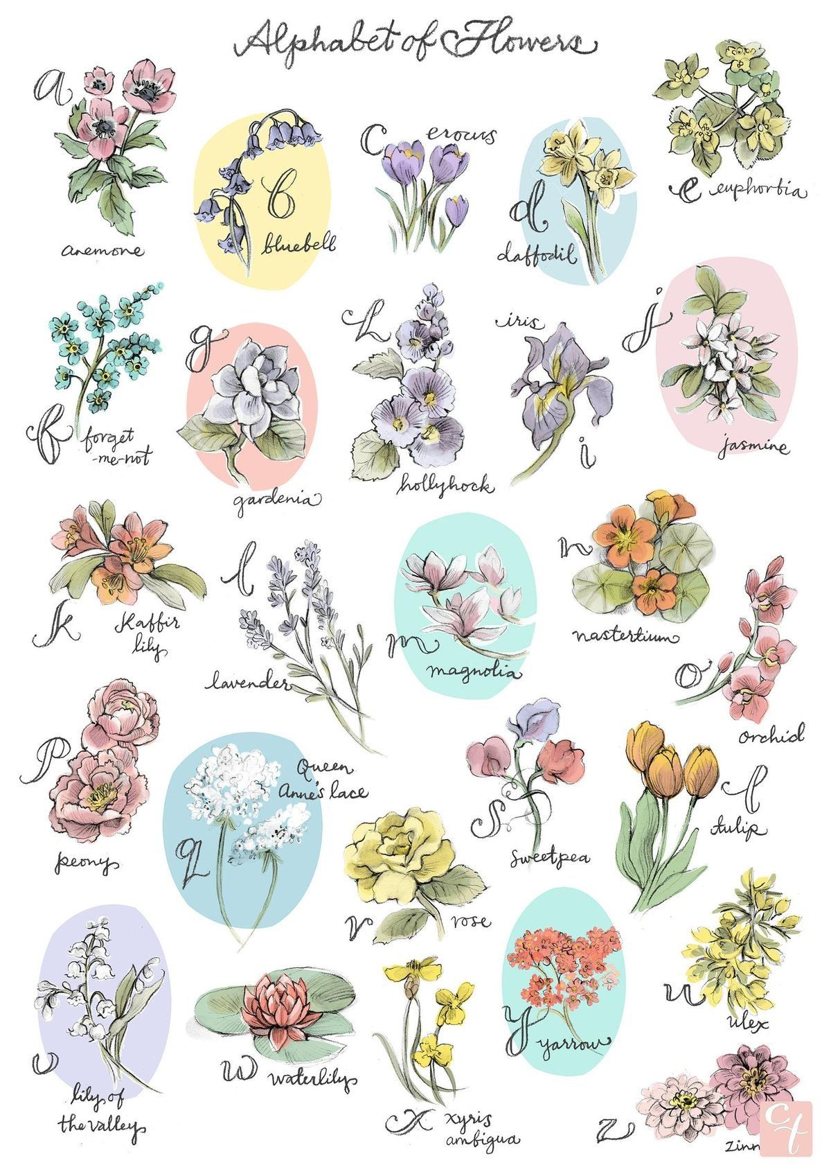 Pin by Bonnie ღ on The Potting Shed Art prints