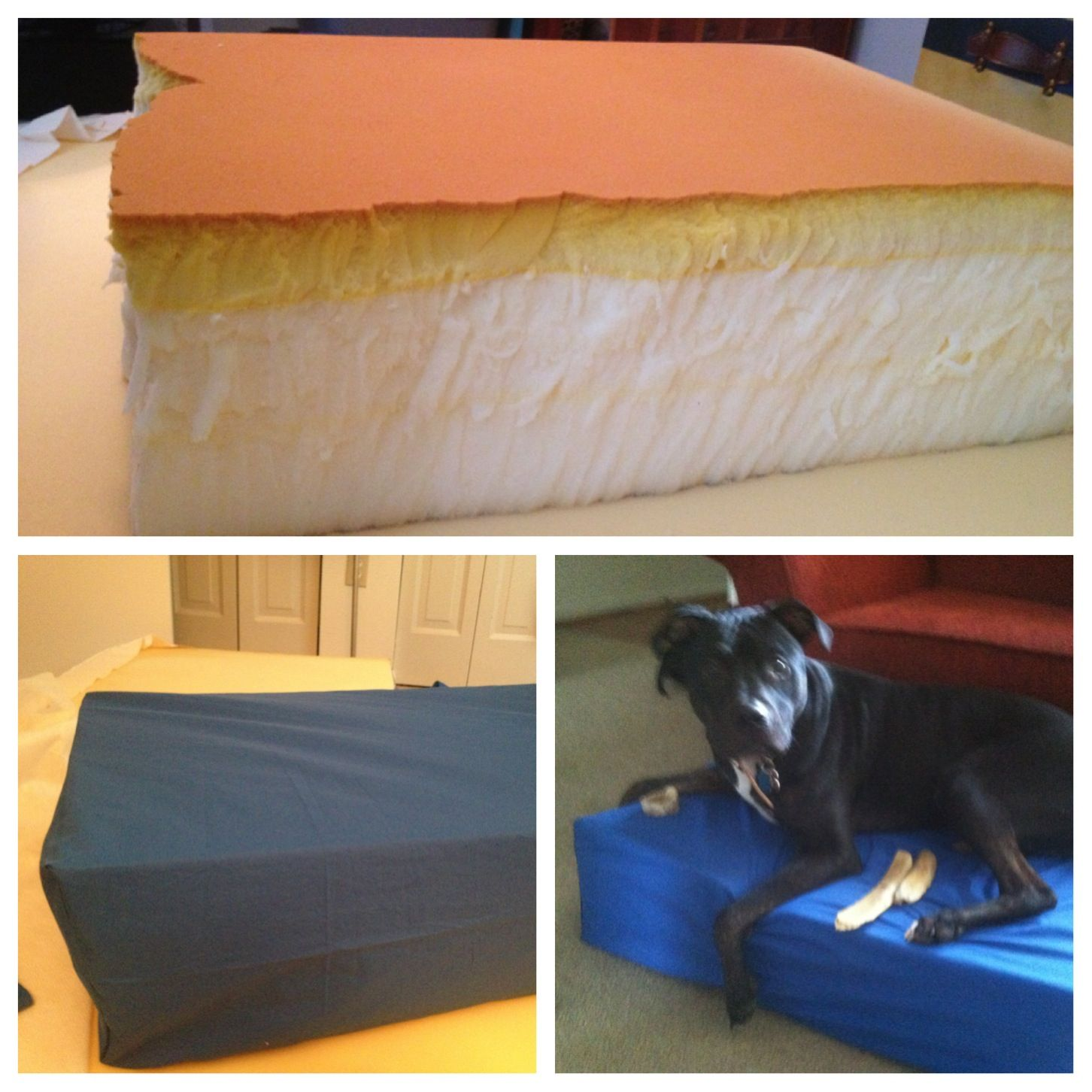 Old memory foam bed cut down to dog size and fabric sewn around for a DIY