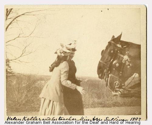 Annie & Helen Horse actual