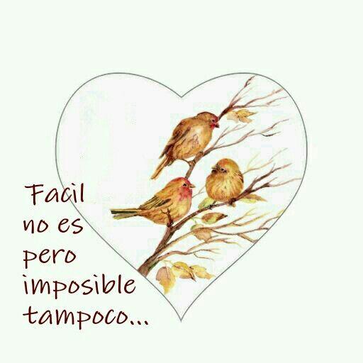 imposible no es