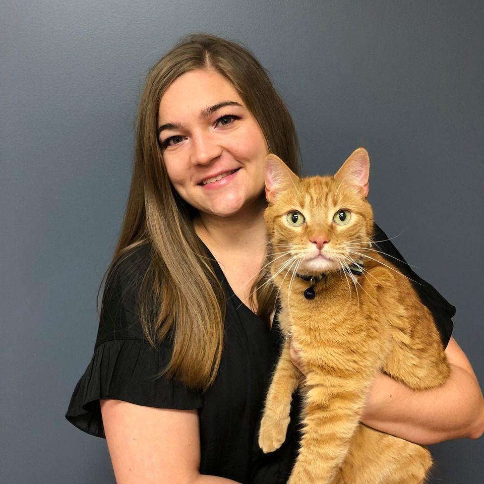 12+ Animal care clinic homer glen ideas