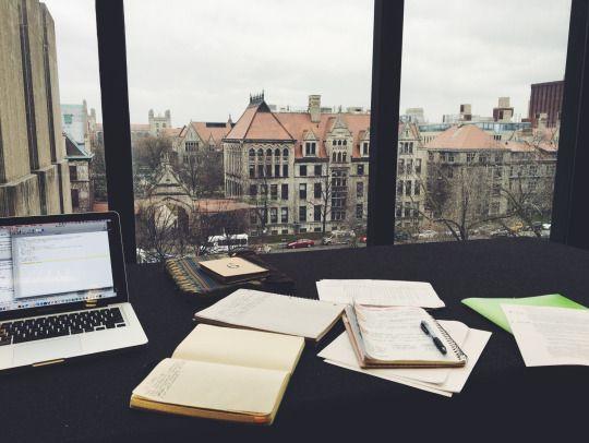 please go study