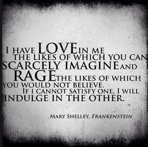 Frankenstein Quotes Quote Mary Shelley And Rage Image  Soul Search  Pinterest  Mary