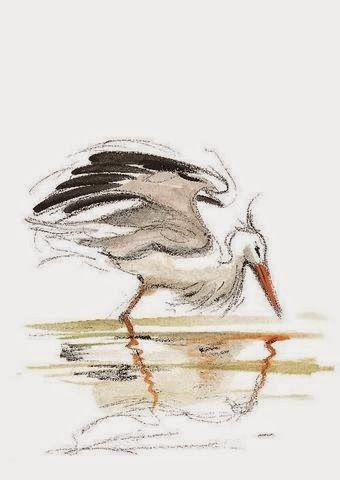 Guido Conti, Il volo felice della cicogna Nilou, con illustrazioni dell'autore, Rizzoli, 2014