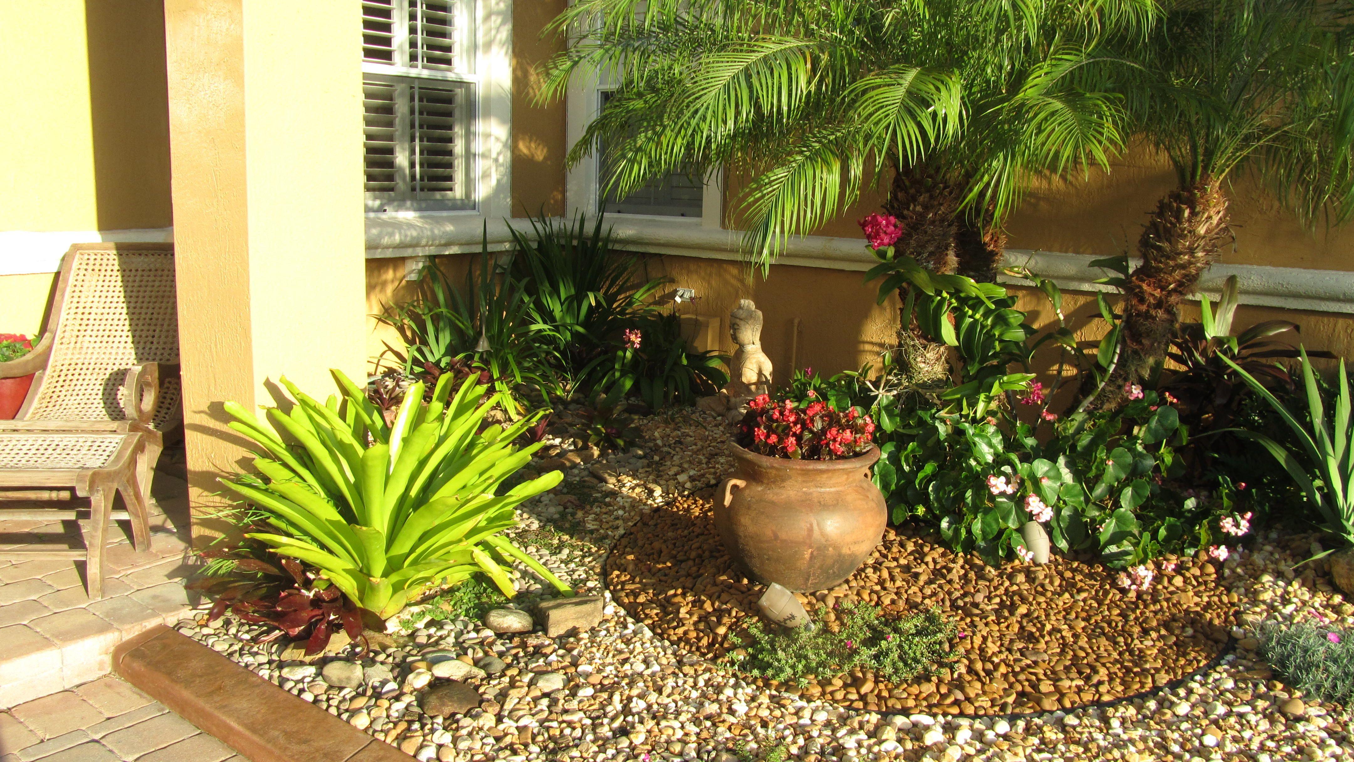 Zen Tropical Rock Garden Tropical Landscaping Backyard