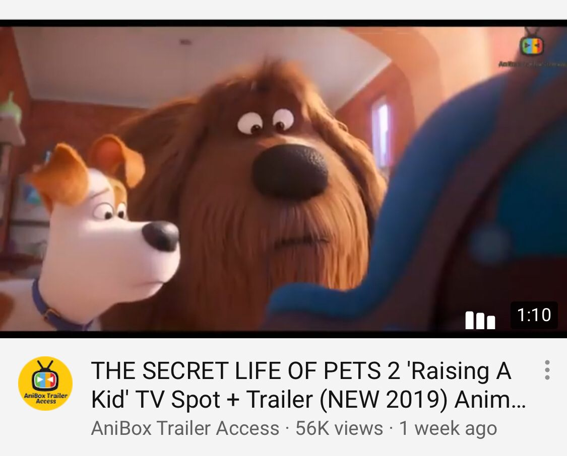 Pin By Aylin Navarro On Song Kids Tv Tv Spot Secret Life Of Pets