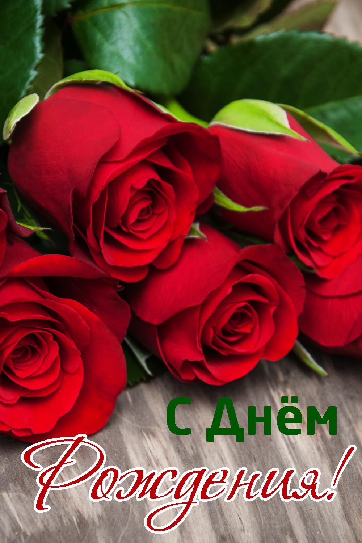Pozdravleniya S Dnem Rozhdeniya Krasivye V Proze Zhenshine Muzhchine Podruge Mama Sestre Happy Birth Happy Birthday Birth