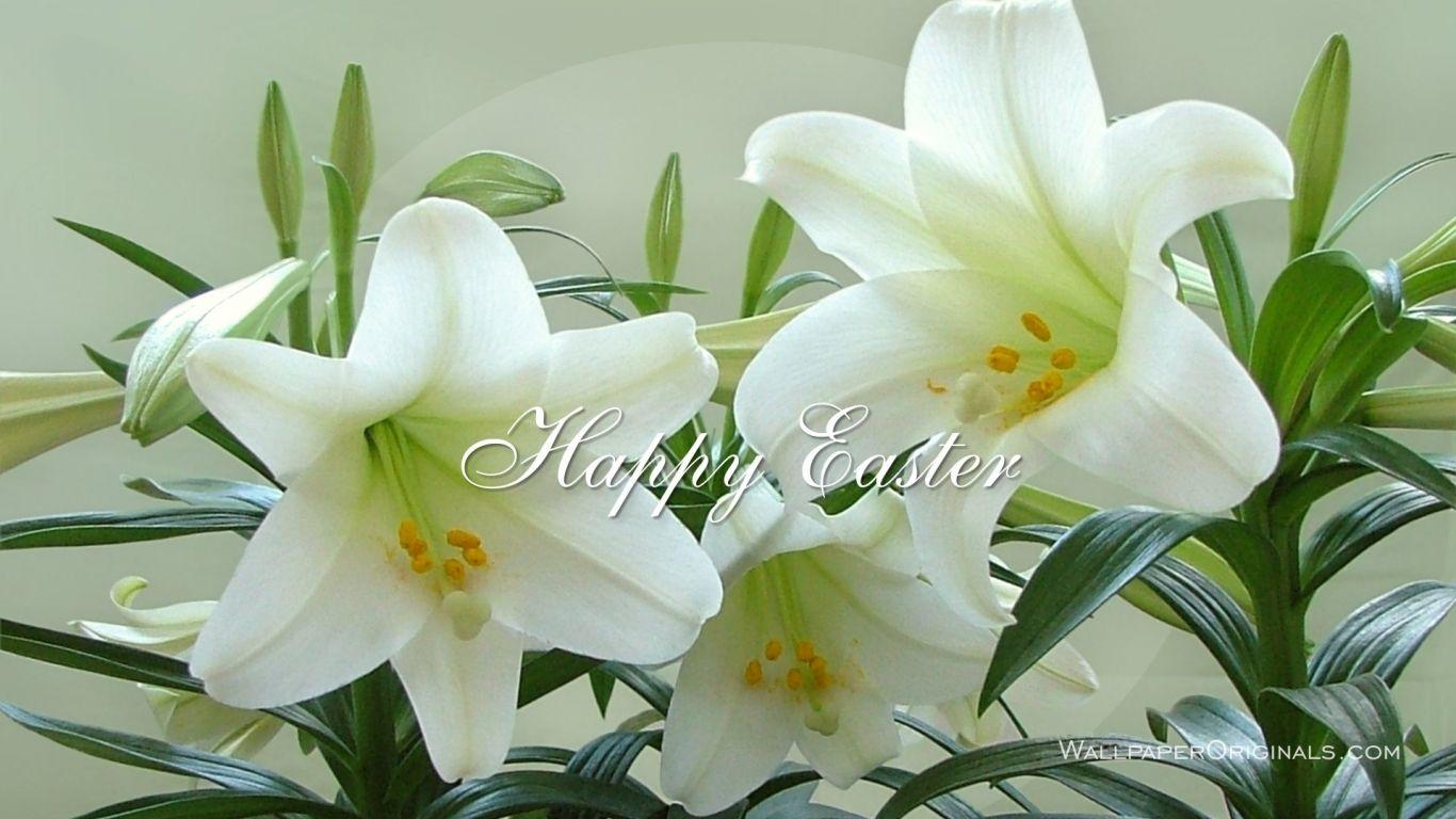 Easter Wallpapers Easter Pinterest Free Easter Cards Easter
