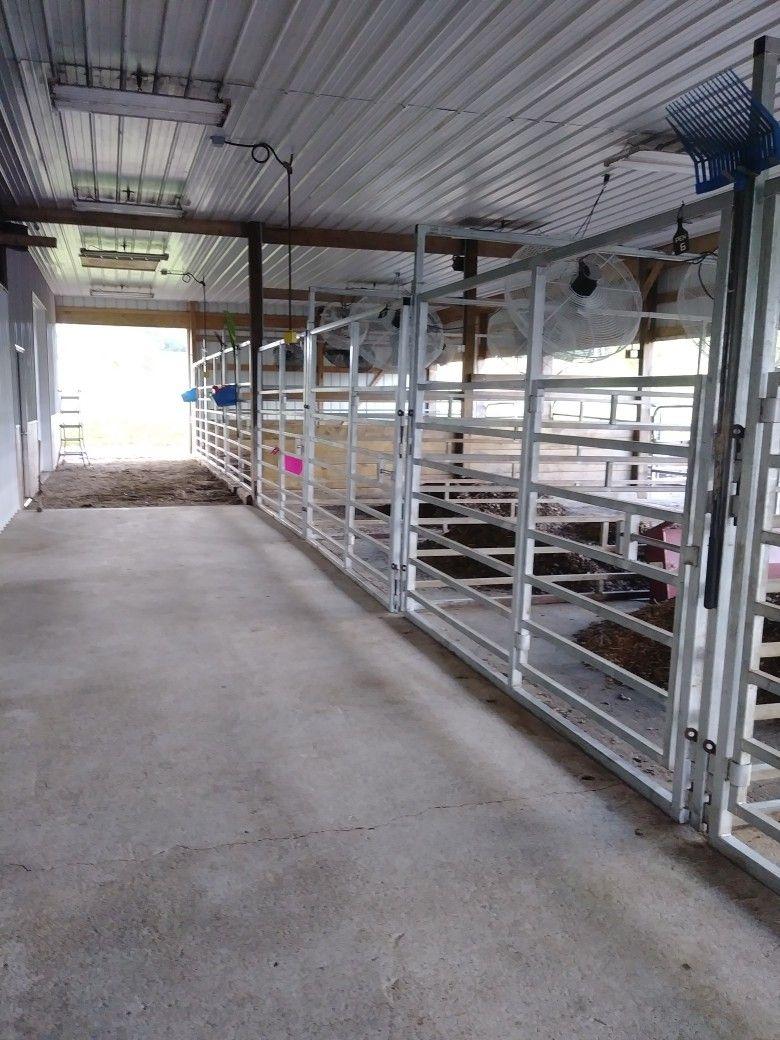 Cook Show Cattle Barn Set Up Www Cookshowcattle Com