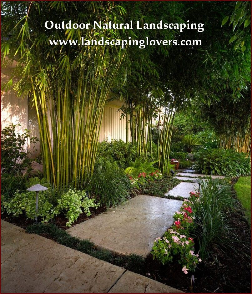 Easy Tweaks To Improve Your Landscaping With Images Backyard