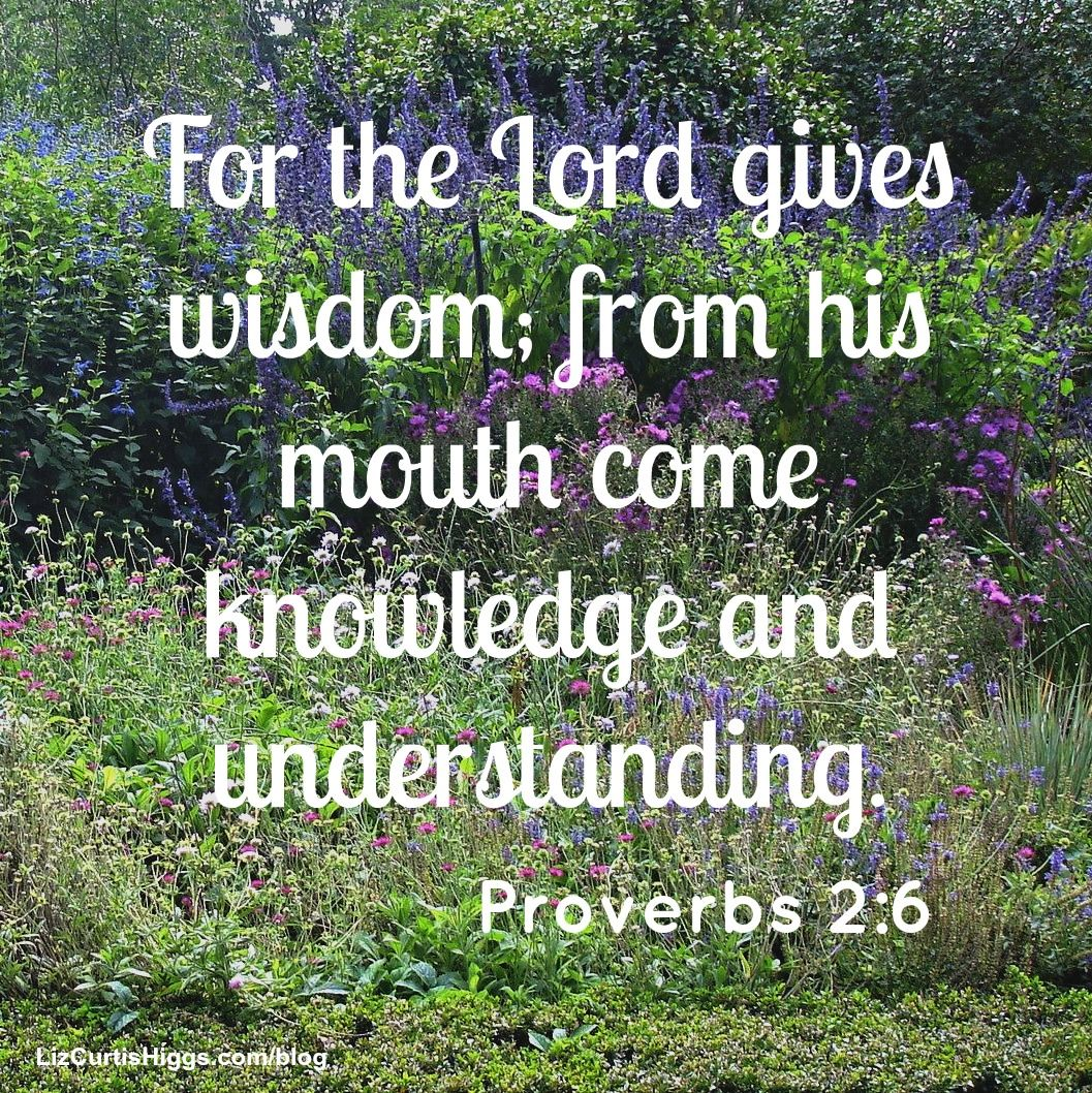 """Book Of Proverbs Quotes: #50 """"Knowledge Is Power, All Right—the Power Of God, The"""