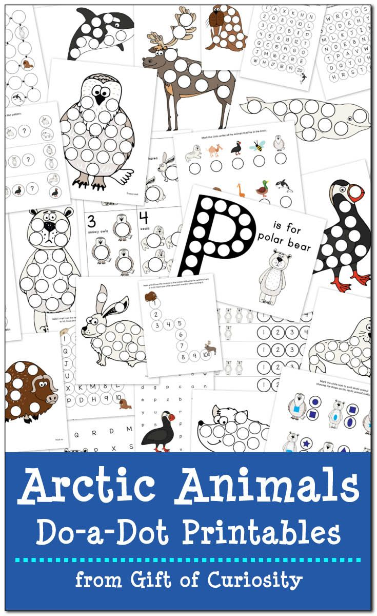 Arctic Animals DoaDot Printables {free} Arctic animals