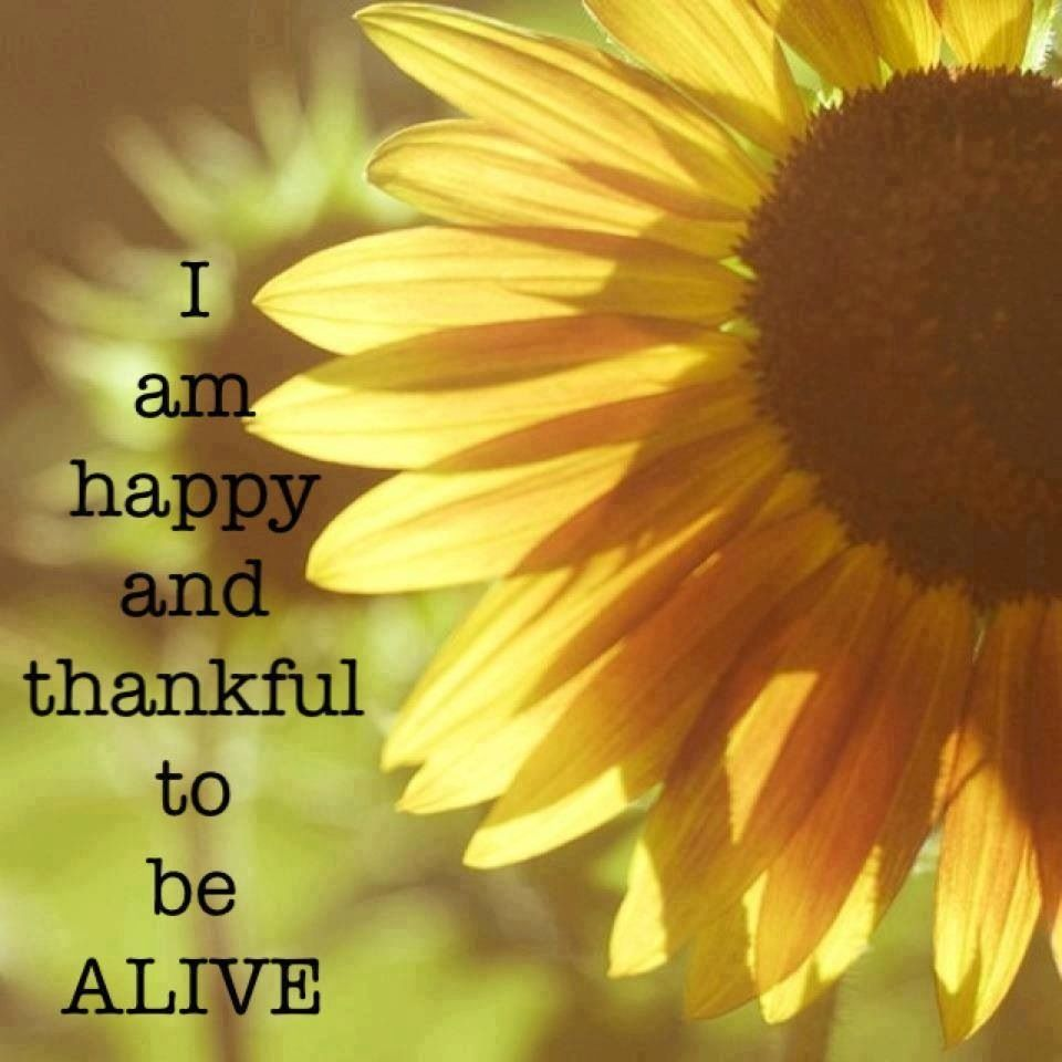 Thankful To Be Alive Quote Via Carols Country Sunshine On Facebook