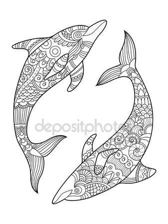 Kleurplaten Van Dolfijnen Mandala.Dolfijn Kleurplaat Boek Voor Volwassenen Vector