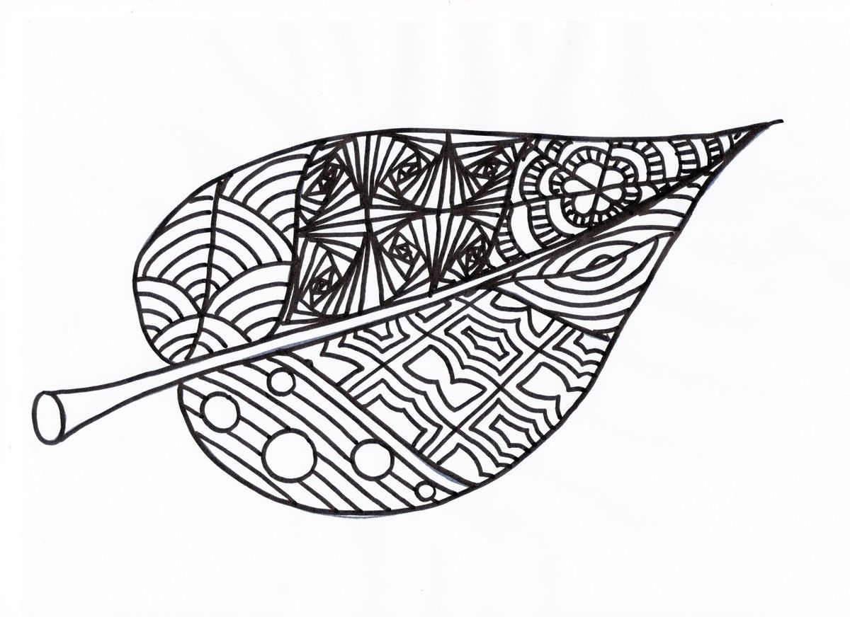 Coloriages d 39 automne cp automne et arbre pinterest - Arbre d automne dessin ...