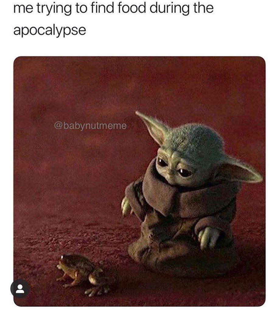 The Mandalorian On Instagram Looks Like We Eating Frog Legs Tonight Credit Babynutmeme Follow Themandalorianmemes For More Mandalorian Tonight Yoda