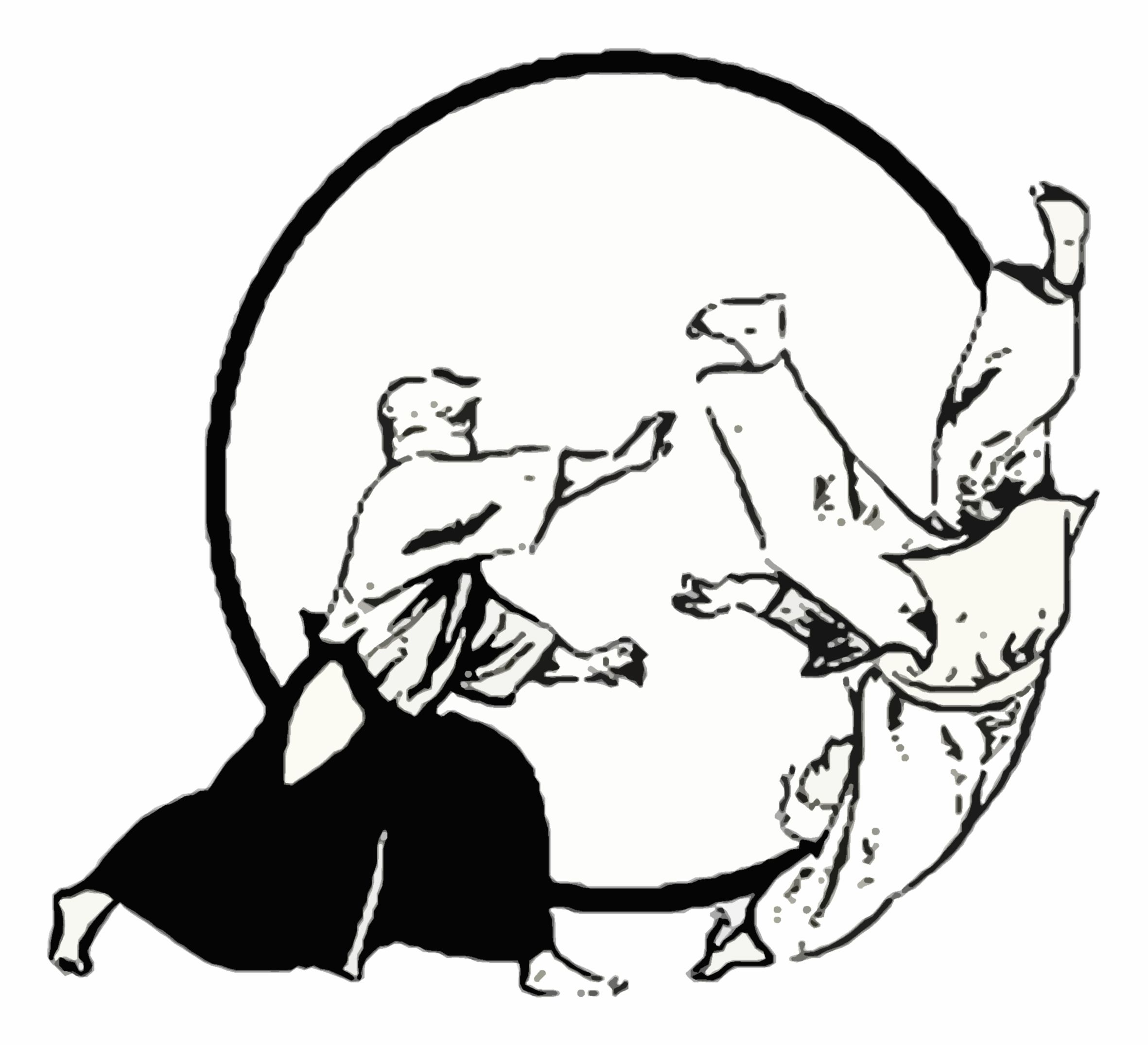 Part of the sports development zone aikido aikido