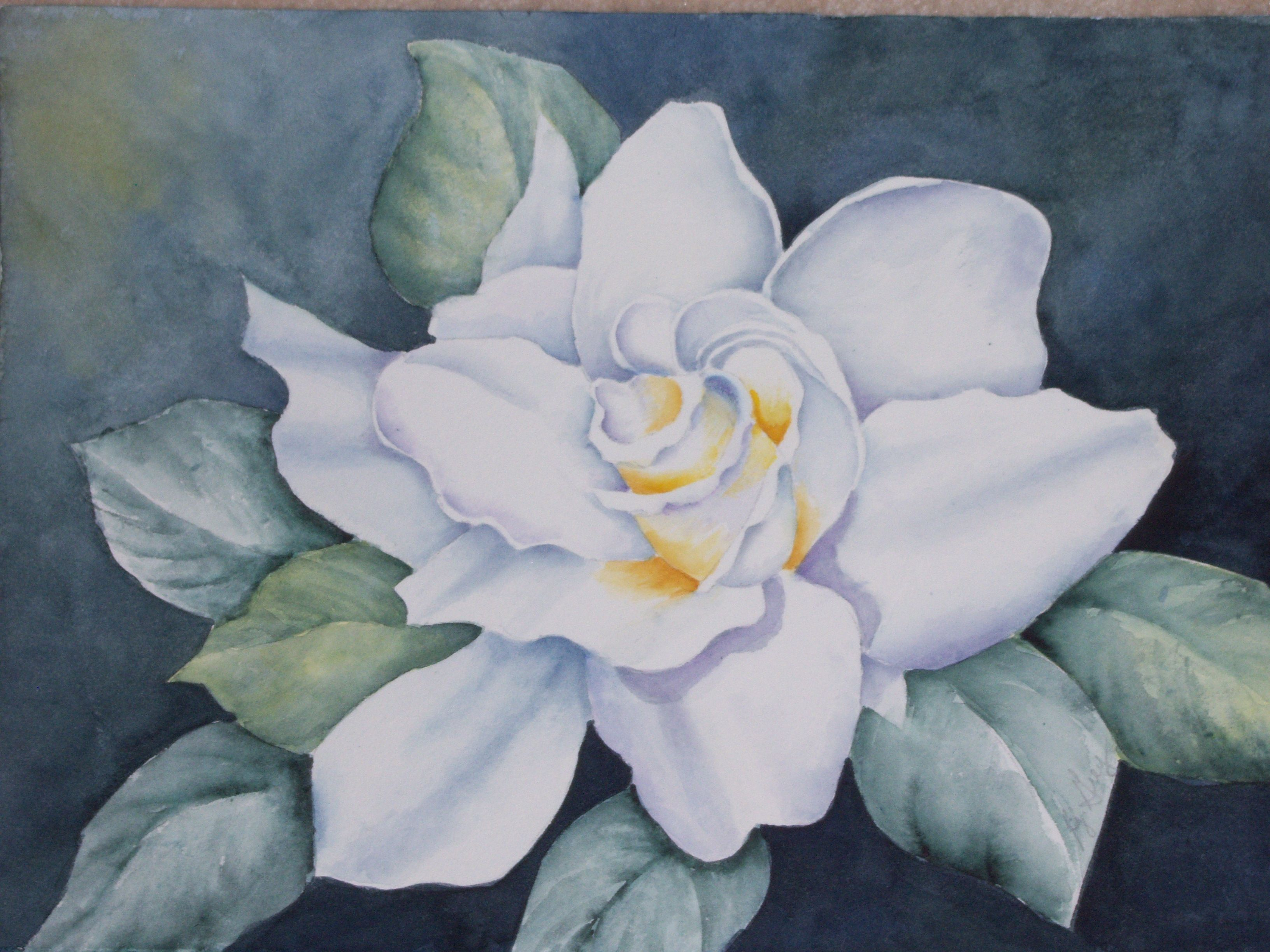 My Painting Watercolor Gardenia Flower Painting Flower Art Flower Drawing