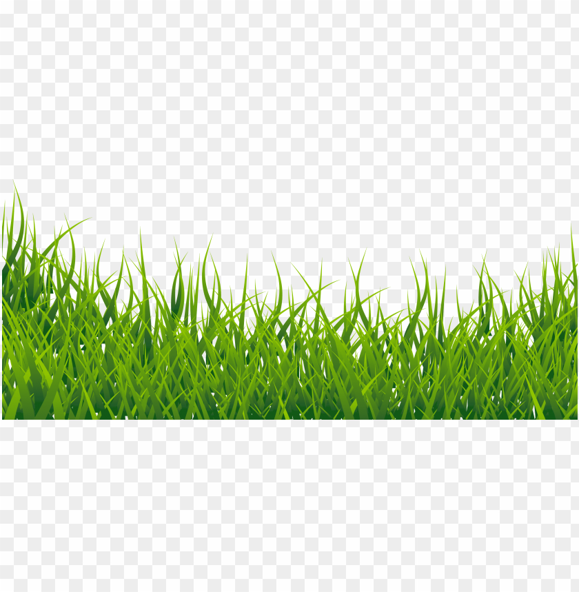 Download Grass Vector Png Images Background Png Free Png Images In 2020 Grass Vector Background Images Stock Pictures