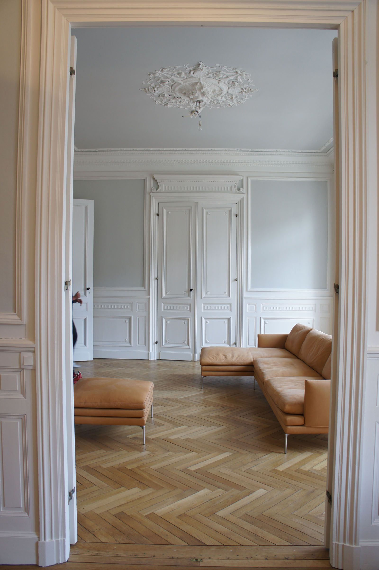 Salon avec ornements r am nag dans appartement for Decoration appartement haussmannien