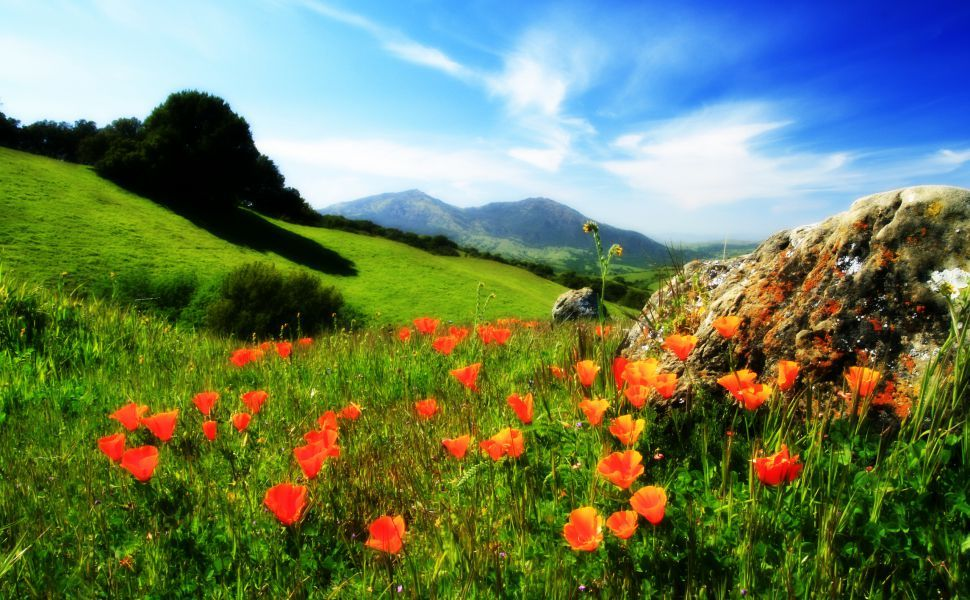 Tapety Na Pulpit Gory Hd Wallpaper Landscape Photography Nature Backgrounds Mountain Summer