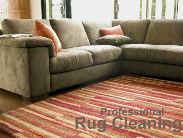 Carpet Rug Cleaning Service Natureu0027s Chem Dry 5354 Gunston Hall Dr  Woodbridge, VA 22193