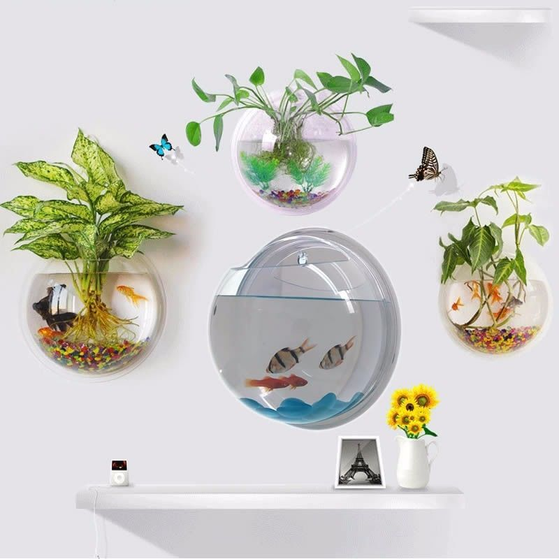How To Decorate Fish Bowl Pot Plant Wall Mounted Hanging Bubble Bowl Fish Tank Aquarium Home