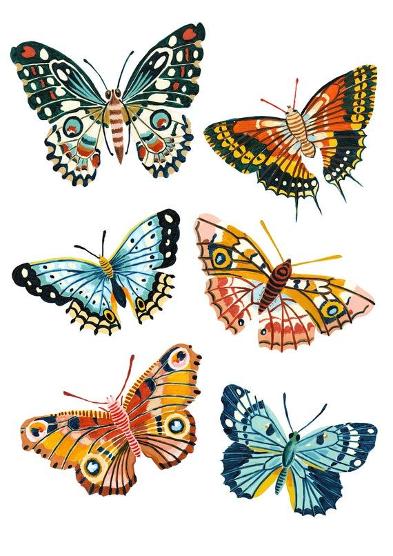 Photo of Butterfly Wall Art, Insect Print, Nursery Wall Art, Bugs Print, Kids Room Decor, Animal Nursery, Bugs Art, Woodland Nursery, Gift for Her