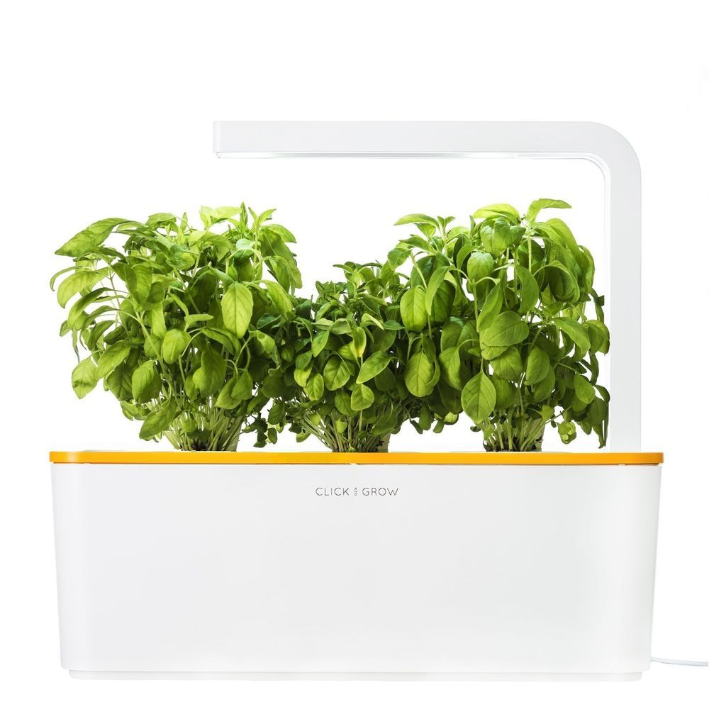 Grow Fresh Herbs At Home With Zero Effort Using A Smart Garden Is