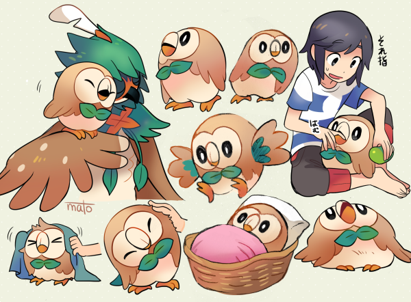 Photo of the moment with rowlet along his day helping out until evolve decidueye