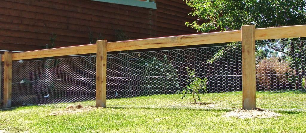 Inexpensive Dog Fence Google Search Diy Dog Fence