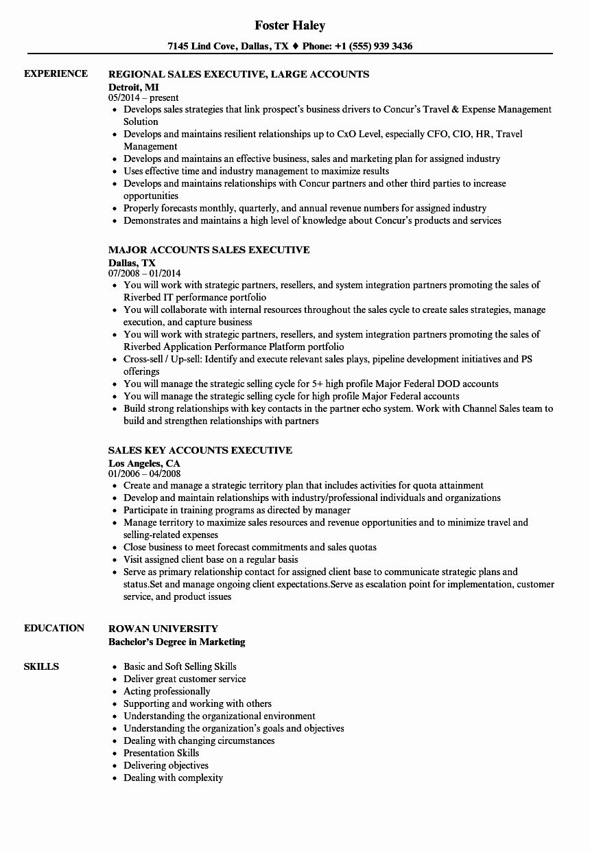 50 Fresh Sales Account Executive Resume in 2020 Job