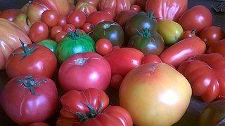 Tomates, Légumes, Alimentation