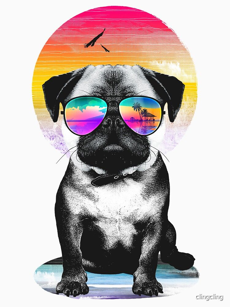 23+ Cool dog wallpapers iphone